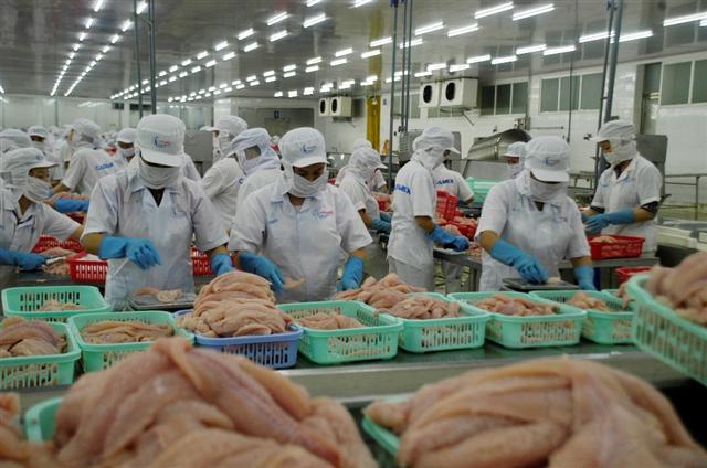 Xuất khẩu cá tra tiếp tục tăng trưởng âm