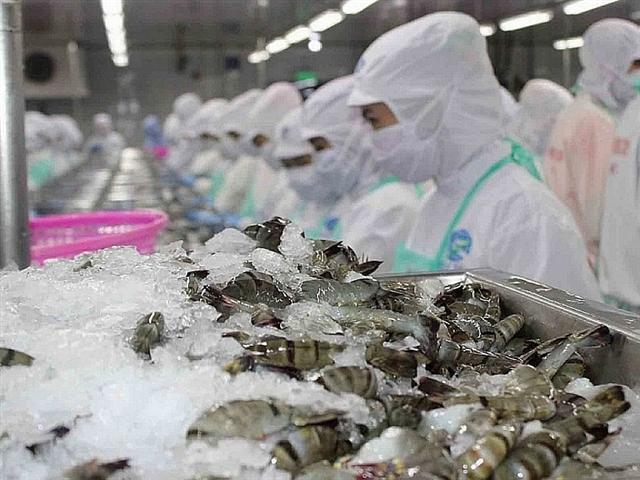 Xuất khẩu tôm sang Trung Quốc cả năm dự báo tăng 7%
