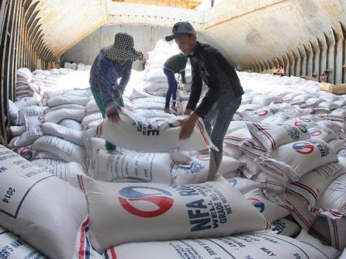 Cổ phần hóa Tổng Công ty lương thực miền Nam: Nhà nước giữ 51% vốn