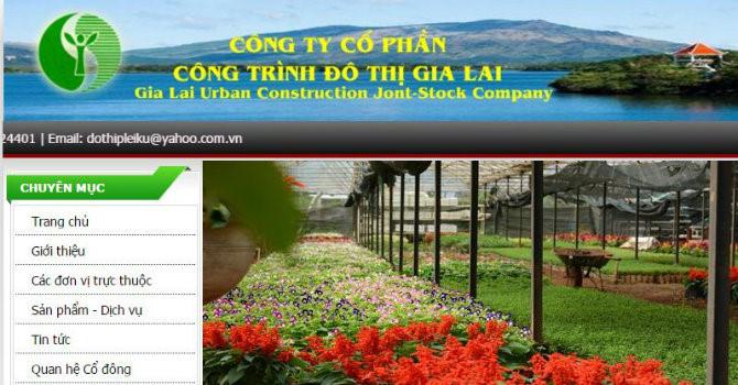 CTCP Công trình đô thị Gia Lai bị phạt 40 triệu đồng