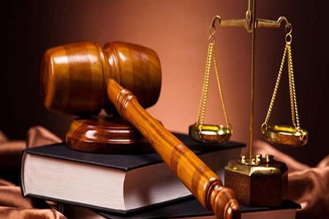 Khai sai thuế, Ego Việt Nam bị phạt và truy thu hơn 250 triệu đồng